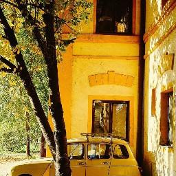 yellow💛 yellow yellowisee