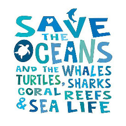 freetoedit savetheoceans savetheearth saveourplanet ourplanet change help fyp remember news page interesting nature oceans animals climatechange plastic nomoreplastic blogsaveourplanet saveourplanetoficial ocean beach