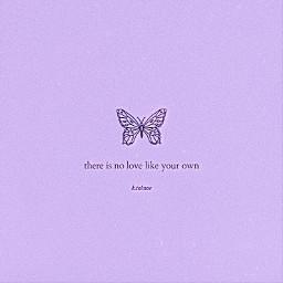 purple butterflies aestheticquote
