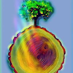 wood tree prism challengeoftheday magiceffect freetoedit picsart ircatreecookie atreecookie