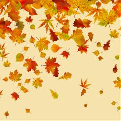 Celebrate,the,new,season,and,create,an,awesome,sticker,autumn,leaves,for,this,challenge!,Cover,image,by,@san_dra_br