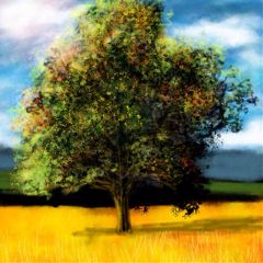 Use,PicsArt's,drawing,tools,to,draw,your,favorite,lonely,tree!,Cover,image,by,@artemisiamelo